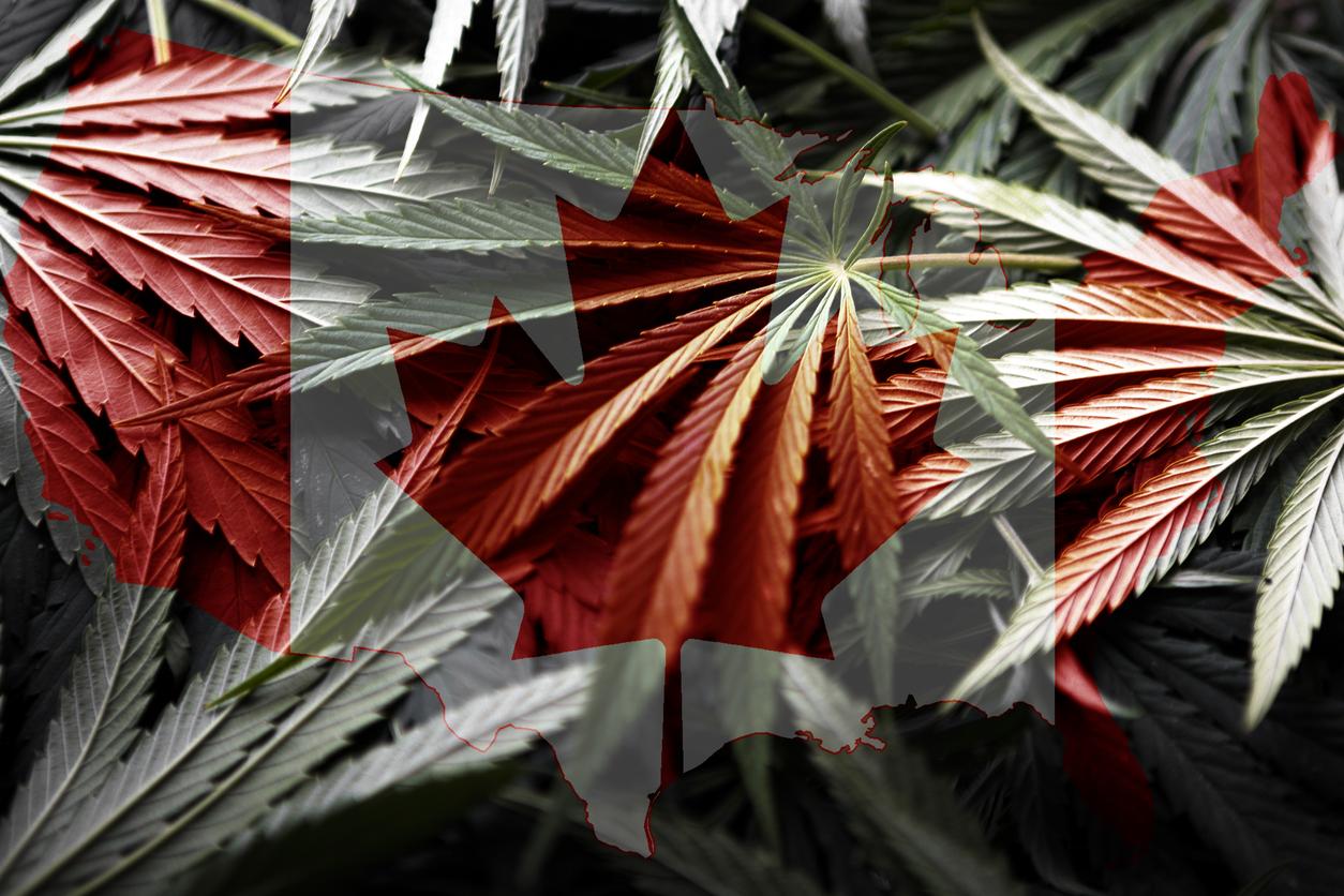 Cannabis, un an après, où en sommes-nous?